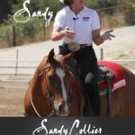 A Clinic With Sandy