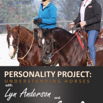 Personality Project With Lyn Anderson & Sandy Collier