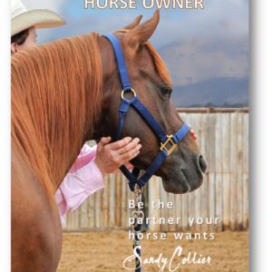 MORE Secrets To Becoming A Great Horse Owner – V4081801106