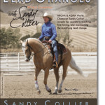 Demystifying Lead Changes With Sandy Collier