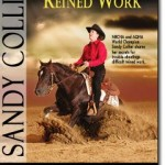 Troubleshooting Reined Work – 2 DVD Set