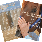 Secrets To Becoming A Great Horse Owner – V4081709252